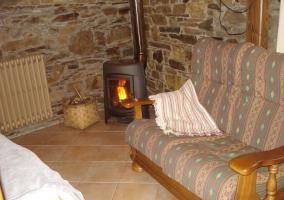 Salón con chimenea y radiador