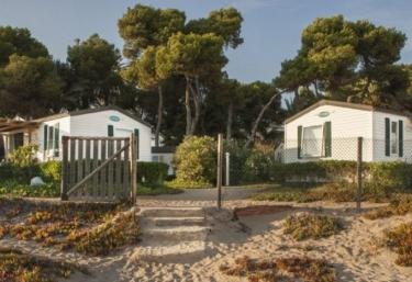 Camping Las Palmeras - Tarragona (Capital), Tarragona
