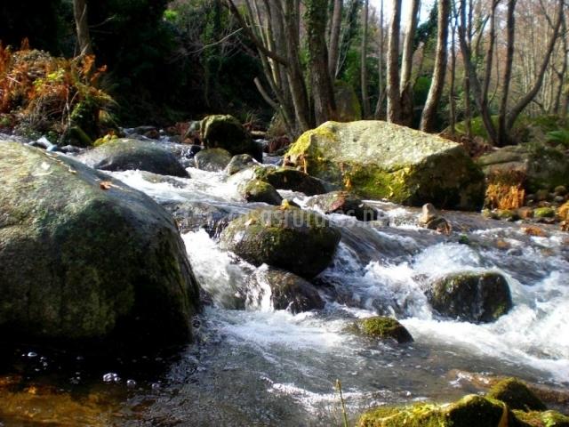aguas naturales
