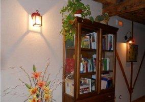 Librero con una colección de libros