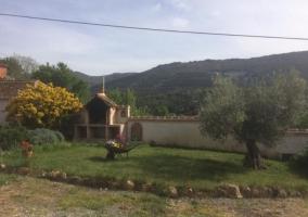 Vistas del exterior con la barbacoa y olivo