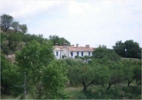 Casa Tío Pedro Miguel