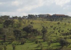 Entorno de la casa rural