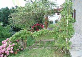 Jardín con vegetación y flores
