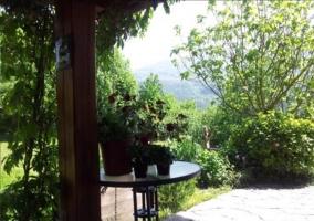 Jardín de la casa con plantas y mesa