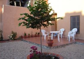 Patio exterior de la casa con planta con flores y zona techada