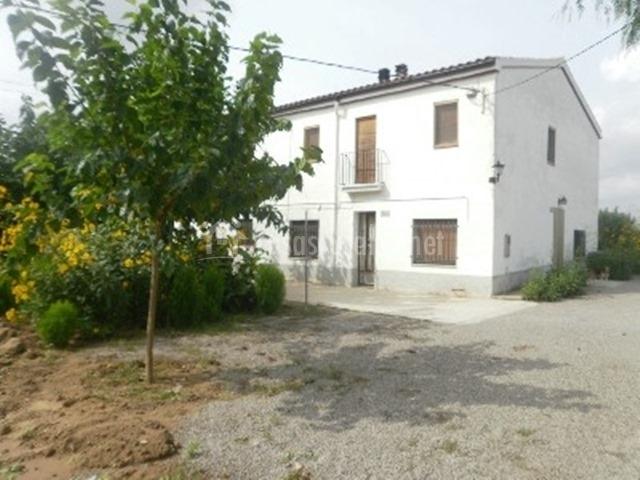 Exterior asfaltado del alojamiento rural rodeado de árboles