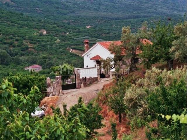 Casa carrizosa en navaconcejo c ceres - Casas rurales en el jerte con piscina ...