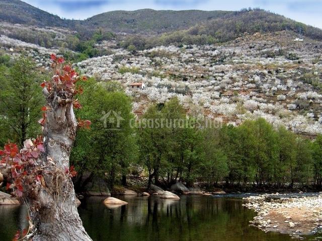 Casa carrizosa casas rurales en navaconcejo c ceres - Casas rurales en el jerte con piscina ...