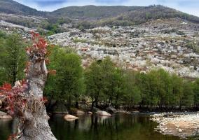 Paisajes de Navaconcejo con el río Jerte y montañas al fondo