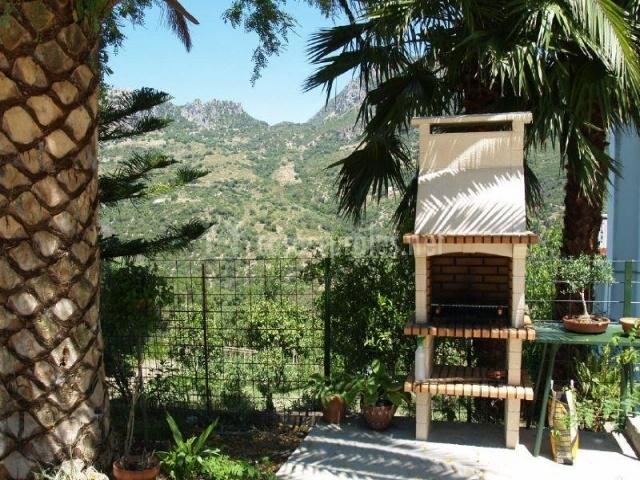 Zona de la barbacoa de obra con palmeras alrededor