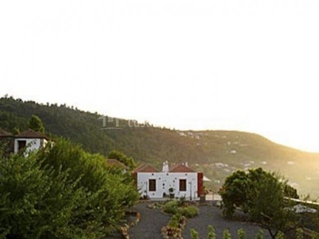 Vistas de la entrada a la casa con caminos de tierra