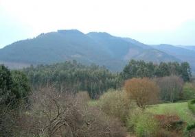 Zona natural del terreno con espacios verdes