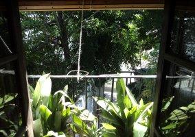 Entrada de la casa llena de plantas y flores con enredaderas en las partes altas