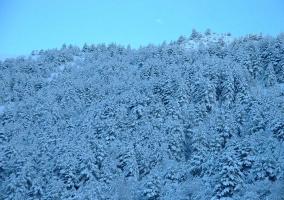 Nuestro entorno nevado