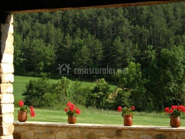 Vistas desde la terraza de las zonas verdes