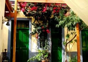 Patio decorado con flores