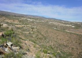 Camino Real de Arico