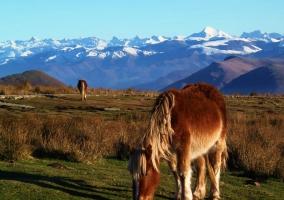 Pirineos desde el Valle del Baztán