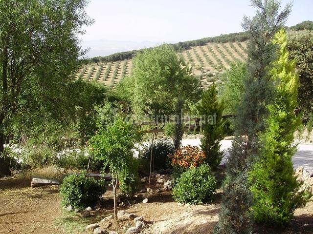 Casa rural la roca en illora granada for Casa rural con jardin