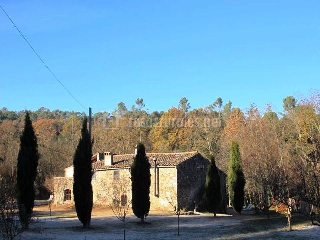 Fachada con distintos árboles