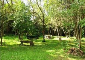 Zona de jardines con hamacas