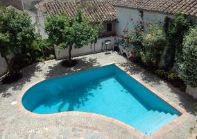 Vista del patio y la piscina con árboles decorativos y zona de solárium