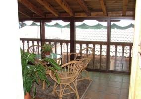 Terraza con plantas y muebles