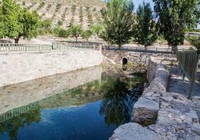 Fuente de la muralla