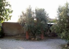 Otro detalle del jardín