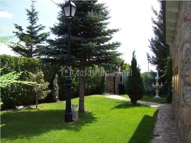 Pinos para jardin pinos y cipreces plantas del jardn japons el pino negro pinos para jardin - Pinos para jardin ...