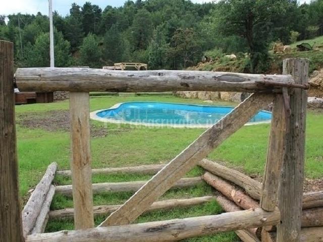 Un hermoso jardín rodea a la piscina