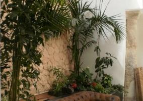 Salón en el patio con muro de piedra y plantas