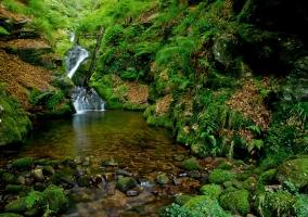 Parque Natural del Saja