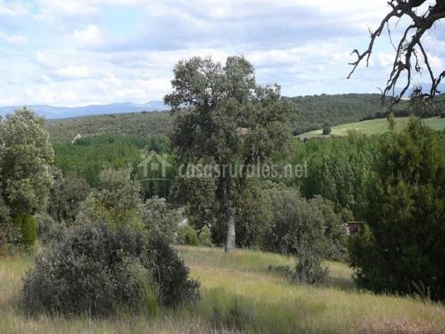 El Camino Real en Villovela De Piron (Segovia) - photo#25