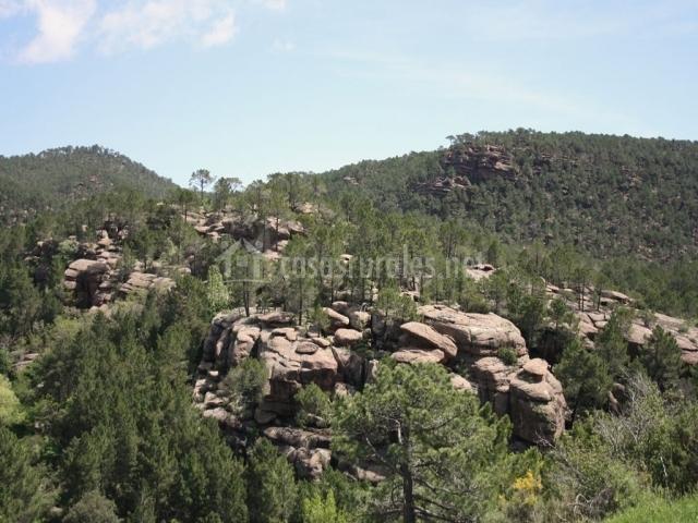 Paisaje de los pinares de Rodeno con rocas y árboles