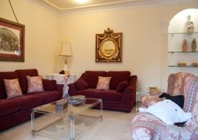 Amplio salón con acceso al jardín