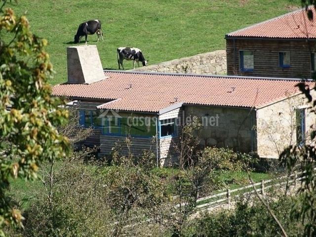 Vistas de la cabaña desde el exterior