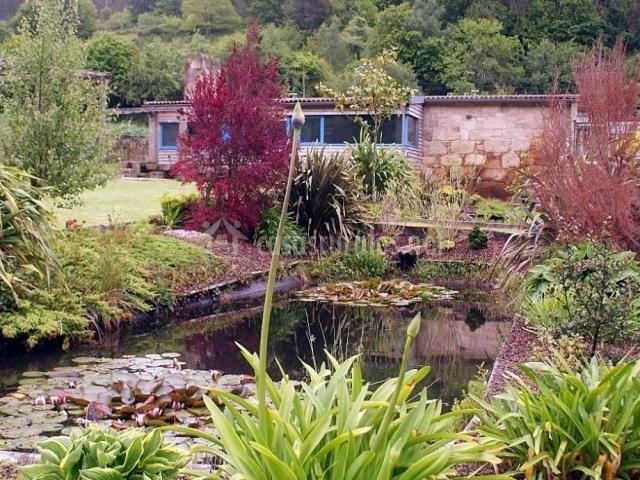 Vistas del estanque natural
