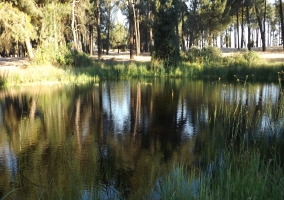 Lagunas de Fuenterrebollo