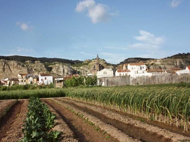 El belcho ii en arguedas navarra - Casa rural arguedas ...