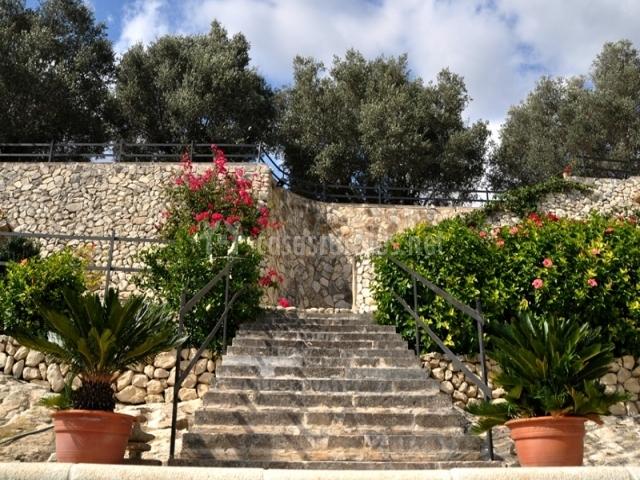 Escaleras con plantas y acceso a una piscina
