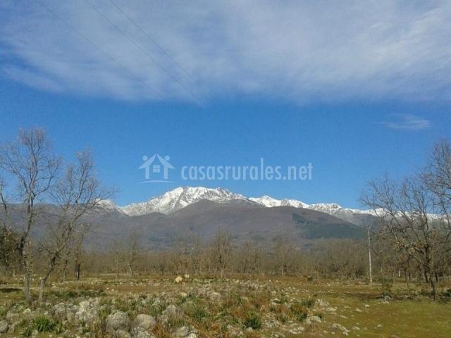 Matrimonio Simbolico Sierra Nevada : La guarida del oso casas rurales en candeleda Ávila