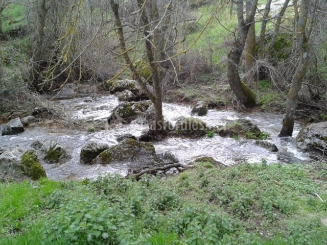 Río en el entorno
