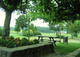 Bancos en el jardín