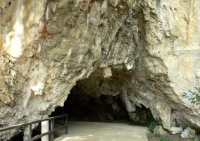 Cuevas del Tito Bustillo