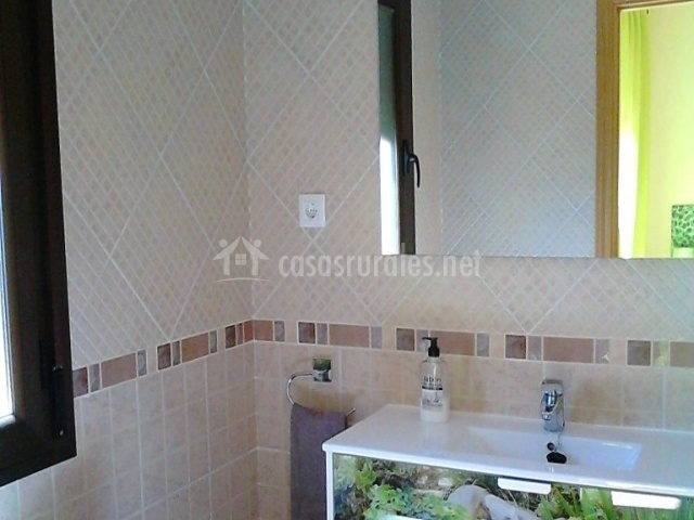 Cuarto de baño dormitorio suite con lavabo con plantas