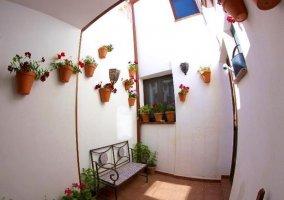 Patio interior con plantas y un banco