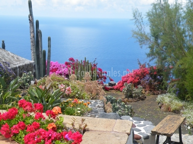 Jardín con flores que rodea a la vivienda