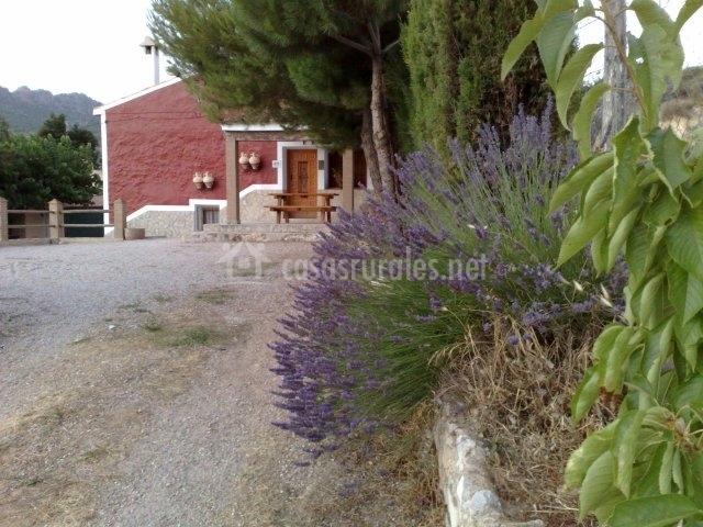 Zona del patio y vista de la casa